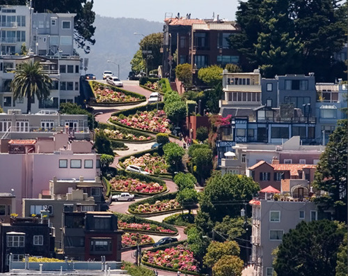 The Crooked Street in San Francisco