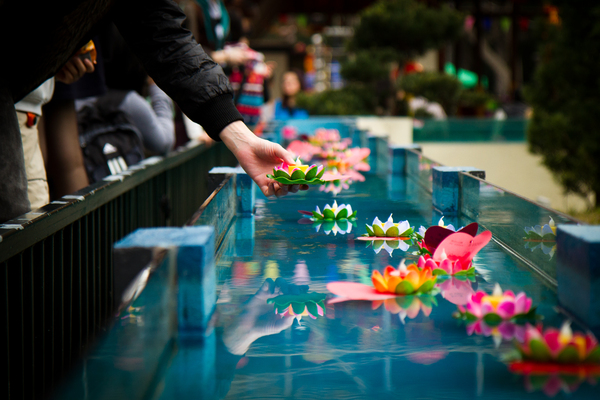 Releasing water lantern with wishes during the Well Wishing Festival in Hong Kong