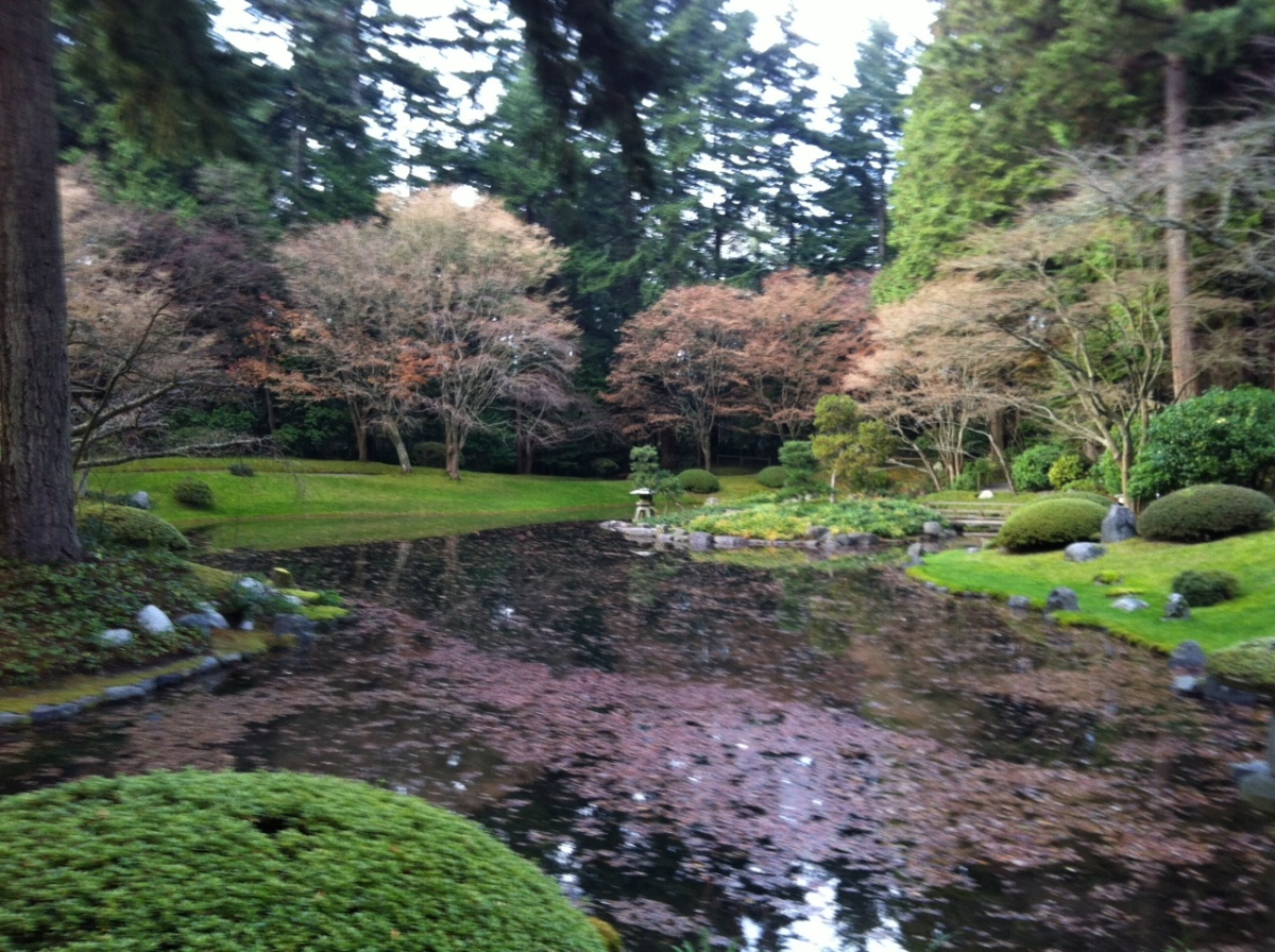 Absolutely charming Japanese garden (Nitobe Memorial Garden) in the University of British Columbia campus
