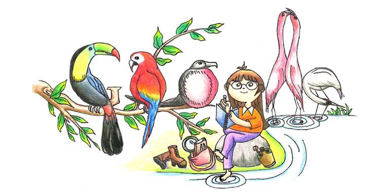 Images Birds Google Doodle Winners