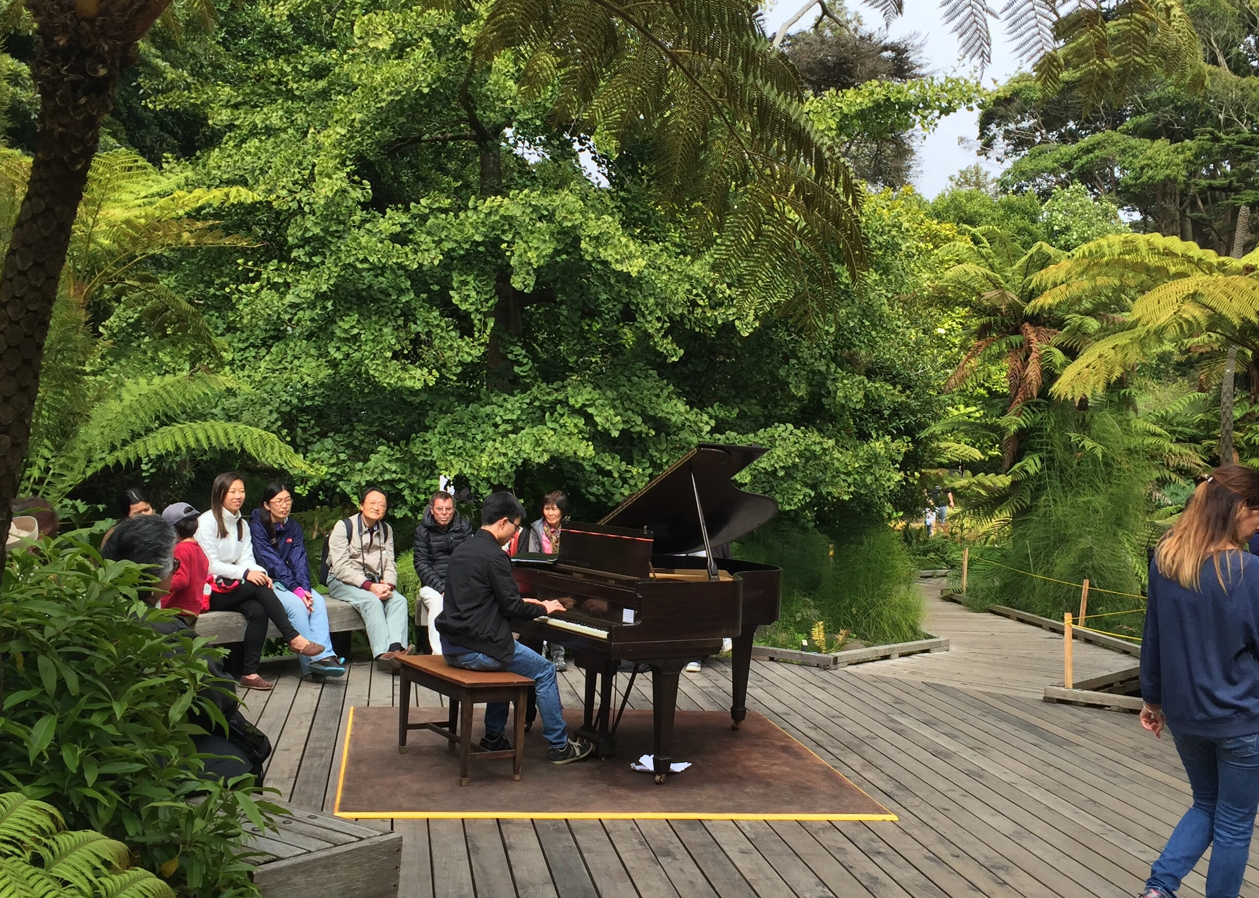 these are some of the flower pianos i have played on today no photos of mine but nevertheless still very fun and memorable - San Francisco Botanical Garden